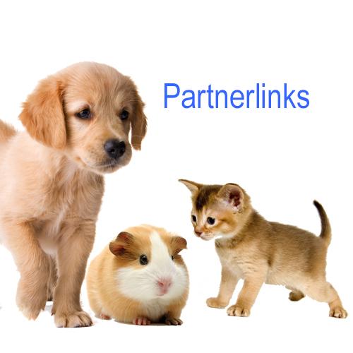 Links zu unseren Partnern