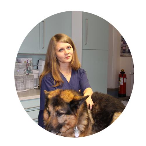 Auszubildende zur Tiermedizinischen Fachangestellten seit 2016